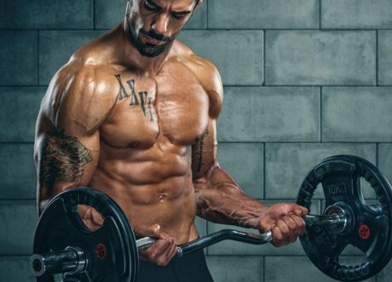 Gyms and Fitness Centres Franchise Opportunity
